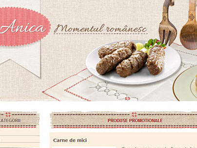 thumbnail of anica.be website