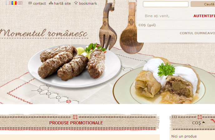 homepage anica.be detail screenshot