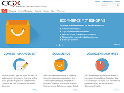 thumbnail of cgx.ch website