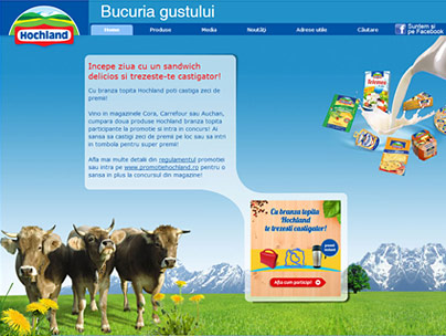 thumbnail of hochland.ro website