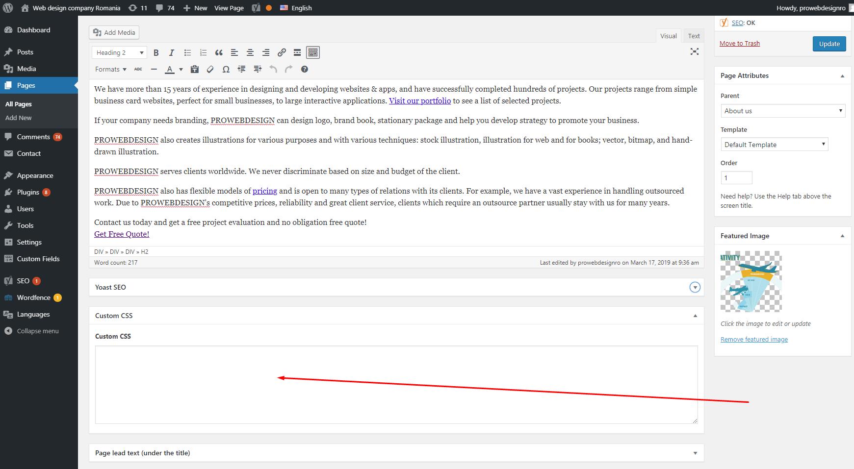 Custom CSS field WordPress theme