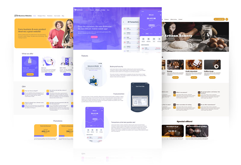 Small Bussiness Websites package design variants